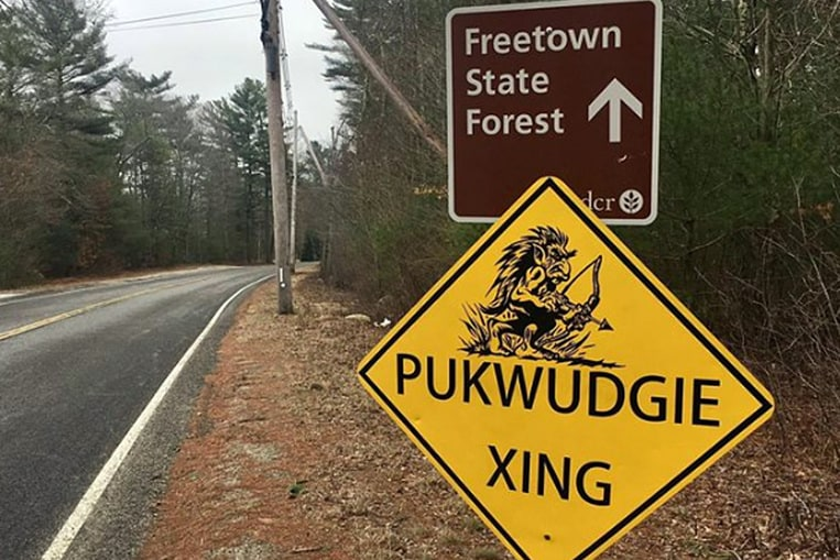 Freetown-Fall River State Forest, United States